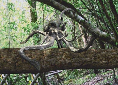 ヒトの祖先はサルではなくカッパだった?水生類人猿説・アクア説_04