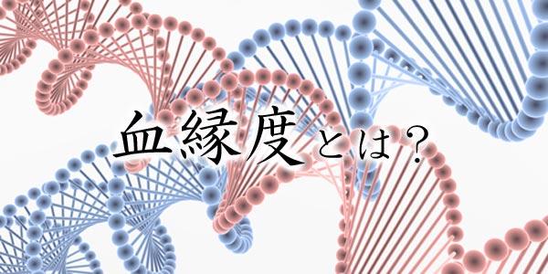 血縁度とは?利己的遺伝子論の理解のための遺伝子を受け継ぐ確率の高さ
